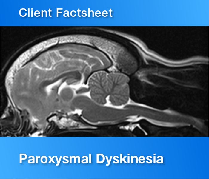 Client Factsheet Paroxysmal dyskinesia