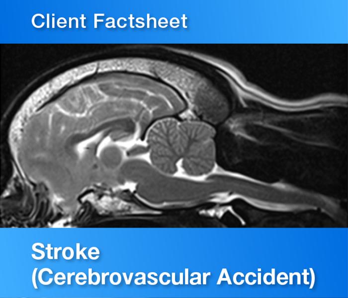 Client Factsheet Stroke